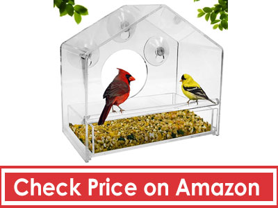 Window-Bird-Feeder-by-Nature-Gear